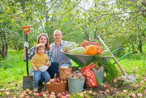 Říjen na zahradě: Připravte rostliny i záhony na zimu