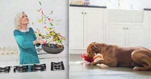 Páníčci nutí psy do veganství. Jde o týrání, hrozí se veterináři