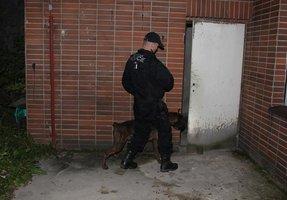 Speciální policejní auta za 727 tisíc: Dostanou je psovodi a poříční útvar