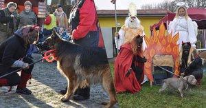 Mikuláš naděloval dárky psům. Ti zlobiví museli do pekelné klece