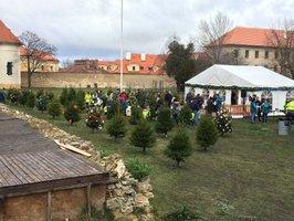 50 vánočních stromů v Loretánské zahradě čeká na ozdobení: Ten nejhezčí získá cenu