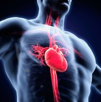 Přílišná mozková aktivita může způsobit infarkt. Pozor na stres, radí studie
