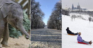 Láska kvete i v zimě: Tipy, kam v lednu na rande v Praze