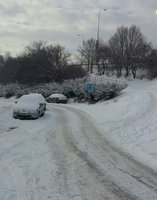 Mrazy dělají problémy popelářům, kontejnery musí vysekávat  z ledu