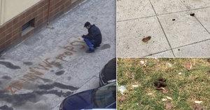 """""""Tady není WC pro psy!"""" Nejen vzkazem na chodníku mohou Pražané bojovat za čisté ulice"""
