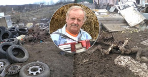 Natáčela se tu reality show Farmář hledá ženu, nyní je statek plný odpadků a zdechlin zvířat