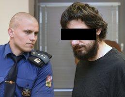 Soud s únoscem dětí z Ústí: Chtěl jsem si s nimi jen hrát, přiznal obžalovaný