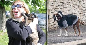 Havlová rozmazluje psa: Neuvěříte, co mu dopřává za odměnu!
