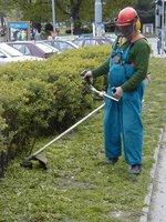 Neposekaná tráva v Praze 8: Podle radnice dojde k nápravě co nejdříve