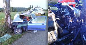 Tragická nehoda na Liberecku: Spolujezdec (†23) nepřežil náraz do stromu
