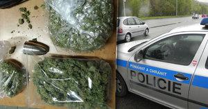 """Muž měl u sebe přes 300 gramů marihuany: """"To mám pro vlastní potřebu,"""" hájil se u policie"""