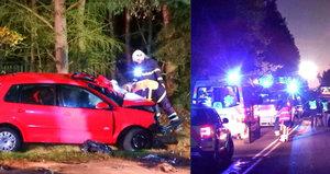 Smrtelná nehoda u Plzně: Mercedes řídil celostátně hledaný muž!