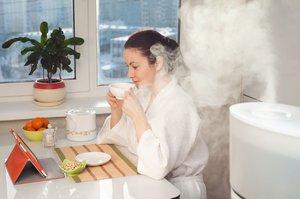 Jak se zbavit suchého vzduchu v místnosti: Vyberte si vhodný zvlhčovač!