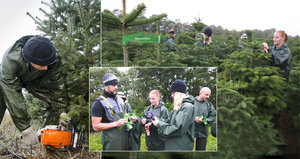 České Vánoce začínají v Dánsku: 350 000 stromků odtud přiveze jen Mountfield