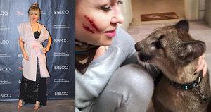 Kateřina Kaira Hrachovcová: Setkání s pumou a krvavé šrámy v obličeji!