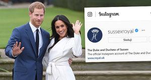 Tohle Kate nečekala! Rekordmani Harry a Meghan po »odstřižení« vytřeli všem zrak