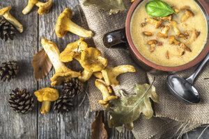 Houbová omáčka z lišek: Dejte si ji s vepřovou pečení nebo jen tak s knedlíkem