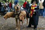 Harry Potter a Chloupek