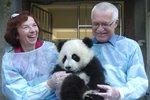 Roztomilé foto z rodinného archivu manželů Klausových: Václav, Livia a panda