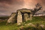 Jaký strom určuje vaši povahu? Moudrost keltských druidů vám poradí