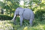 Slon z lega.