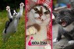 Kočka Česka 2014: Podívejte se na (zatím) nejvtipnější fotky soutěže