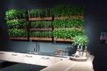 Nejlepší bytové zahrádky světa: Jak pěstovat bylinky přímo v kuchyni