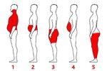 Hubněte podle toho, kde se vám ukládá tuk. Co je pro vás nejefektivnější?
