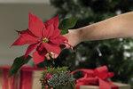 Kužel dozdobte větvičkami naaranžovanými křížem a na špičku kužele připevněte květ červené vánoční hvězdy jako třešničku na dortu.