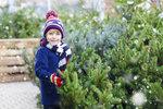 Jak se postarat o vánoční stromek, aby dlouho vydržel