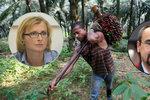 EU chce jen prověřený palmový olej. Poc: Jsou v něm i toxiny
