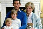 Princezna Diana s rodinou