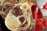 V Česku letos přibylo 240 pacientů s HIV. Za listopad nejvíc v Praze