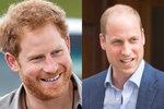 Z ošklivého káčátka idolem Anglie: Jak princ Harry zastínil prince Williama