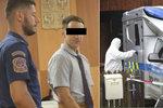 ONLINE Vražda v Doubici před soudem: Promluví přeživší oběť?