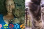 Zachránila dva tucty psů a koček před hurikánem. Teď jí hrozí vězení