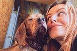 Úspěšná fotografka zahodila kariéru, aby se věnovala stovce nemocných psů!