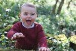 Princ Louis a fotografie k prvním narozeninám