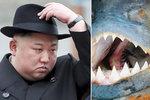 Jako z bondovky: Kim Čong-un prý předhodil svého generála piraním