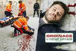 Sebevražda v Ordinaci v růžové zahradě 2: Stach se klepal strachy před Kerestešovou!