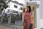 Mynář se stěhuje do vily, Alex porodí v novém. Rekonstrukce spolkla miliony
