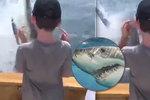 Záběry, ze kterých mrazí: Na loď skupiny otců s dětmi vyskočil obří žralok bílý