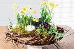 Přivítejte jaro u vás doma. Inspirace na půvabné květinové dekorace