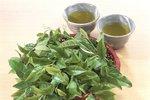 Zelený čaj je skvělý antioxidant