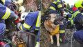 Hasiči vyprostili v Hostavicích psa, který uvázl ve studni.