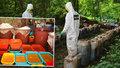 Námořníci v Mexiku narazili na skrýš pervitinu. Bylo ho tam 50 tun!