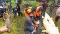 Tělo chlapce z žaludku krokodýla vytáhli v celku