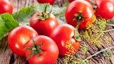 Nejlepší recepty, jak zpracovat rajčata: Naložte je, usušte je, zamrazte!