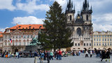 Staromák zkrášlí vánoční strom z České Lípy. Má 23 metrů a 65 let