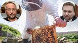 Trest za antibitotika medu: NIŽŠÍ DOTACE z ministerstva zemědělství? Kdo odskáče vinu Včelpa? Poctiví včelaři!
